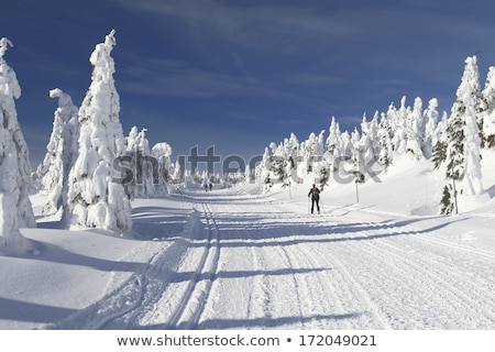 Stock photo: Cross country skiing way in the mountains