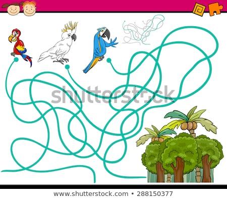 vicces · papagáj · keresés · rajzfilmfigura · izolált · fehér - stock fotó © rastudio