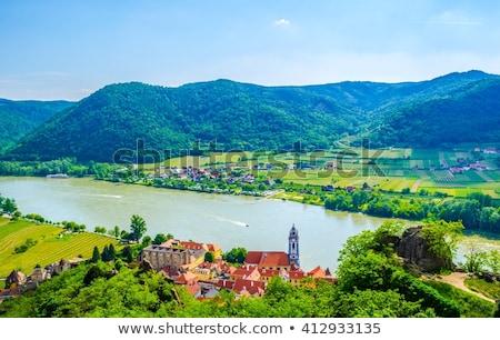 Donau vallei Oostenrijk dorp natuur kerk Stockfoto © tepic