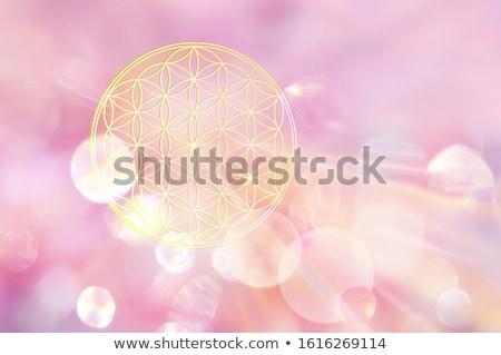 Chakra One Mandala Stock photo © hpkalyani