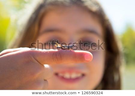 Kid main sauterelle bug macro Photo stock © lunamarina