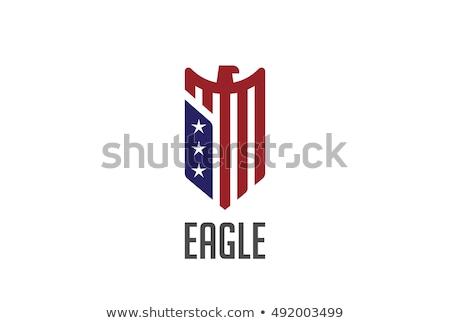 Falcon Hawk Eagle Bird Stock photo © patrimonio