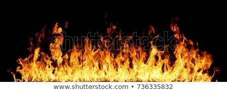 tűz · lángok · tükröződés · fekete · természet · fény - stock fotó © Nneirda