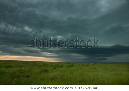 dark storm clouds over grasslands stock photo © digoarpi
