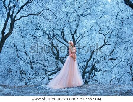 Fantezi kadın pembe elbise ayakta Stok fotoğraf © user_6981622