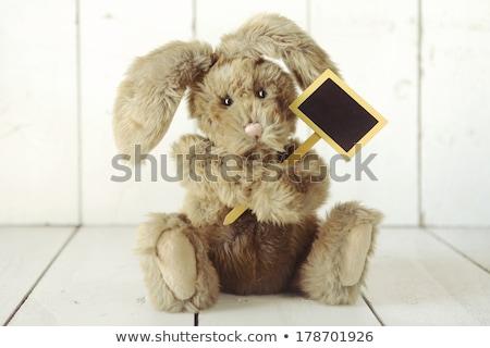 Teddy Bear Like Home Made Bunny Rabbit on Wooden White Backgroun Stock photo © tobkatrina