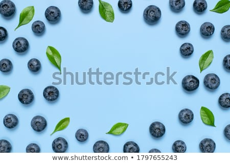 Blueberry Background Stock photo © ambientideas