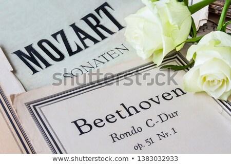 Levha klasik notlar güzel piyano Stok fotoğraf © Tagore75