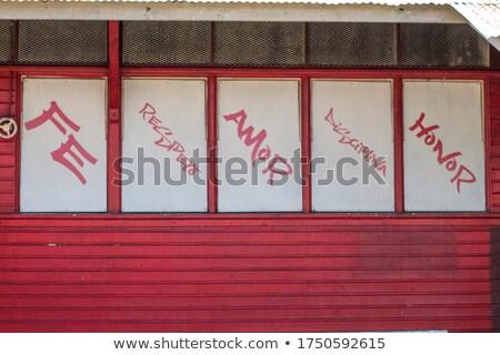 disciplina · jovem · furioso · mulher · gritando - foto stock © tashatuvango