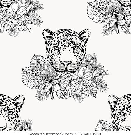 Jaguar doku moda soyut sanat Stok fotoğraf © gladiolus