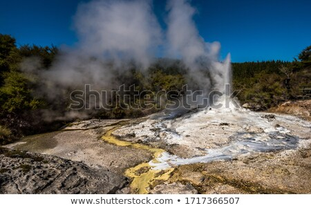 Small Geyser Erupting Stock photo © wildnerdpix