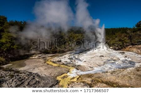 géiser · pequeno · parque · Estados · Unidos · natureza · terra - foto stock © wildnerdpix