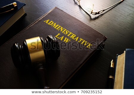 A law book with a gavel - Administrative law Stock photo © Zerbor