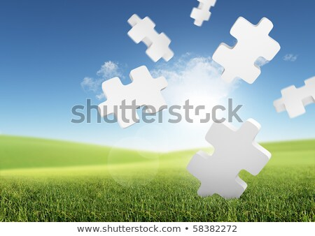 Job Skills on Green Puzzle. Stock photo © tashatuvango