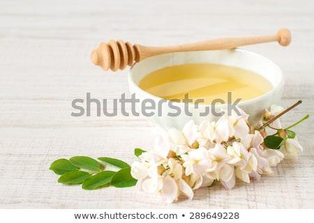 robinia honey with acacia blossoms  Stock photo © mady70