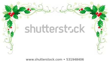 christmas border holly berries horizontal stock photo © irisangel