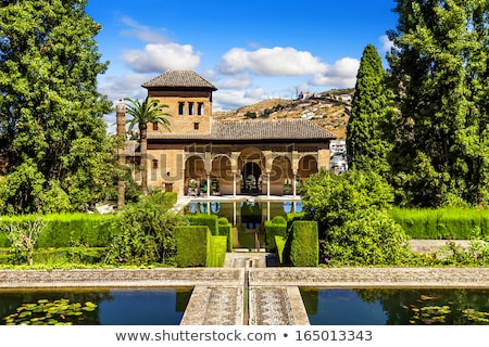 プール アルハンブラ宮殿 宮殿 スペイン マスター アーキテクチャ ストックフォト © rmbarricarte
