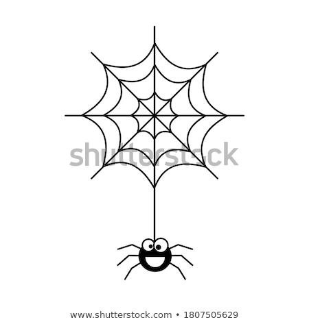 Klein spin foto spinneweb tuin achtergrond Stockfoto © Nneirda