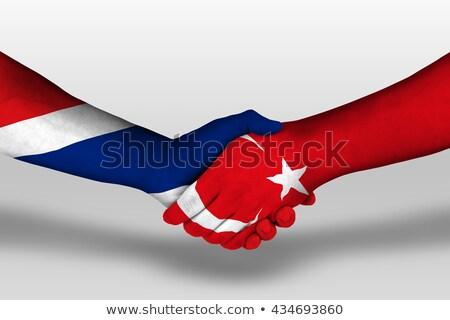 Turchia Thailandia bandiere puzzle isolato bianco Foto d'archivio © Istanbul2009