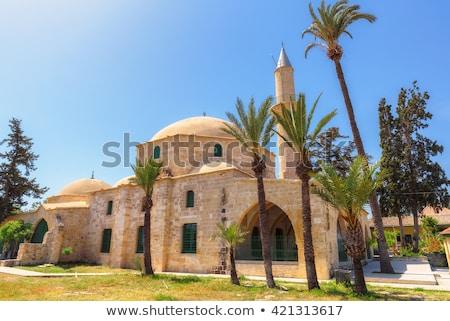 Hala Sultan Tekke. Larnaca, Cyprus Stock photo © Kirill_M