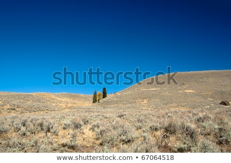 Yellowstone National Park: Hills close to Gardner River Stock photo © fisfra