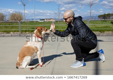 Man with brown dog. stock photo © iofoto