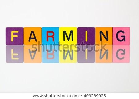 Farming - an inscription from children's  blocks Stock photo © CaptureLight