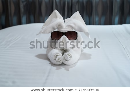 Frog with glasses on a towel Stock photo © brux