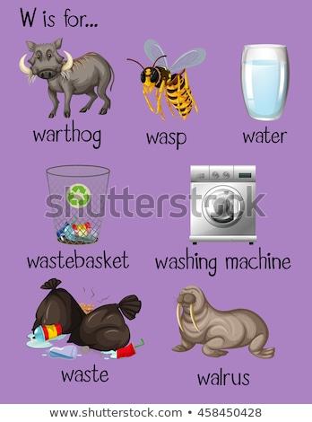 Lettre w machine à laver illustration fond art éducation Photo stock © bluering