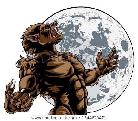 оборотень Scary характер дизайна тело волка Сток-фото © doddis