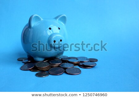 White and blue piggy bank Stock photo © Hofmeester