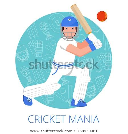 Kriket bacak koruma ikon spor enerji Stok fotoğraf © angelp