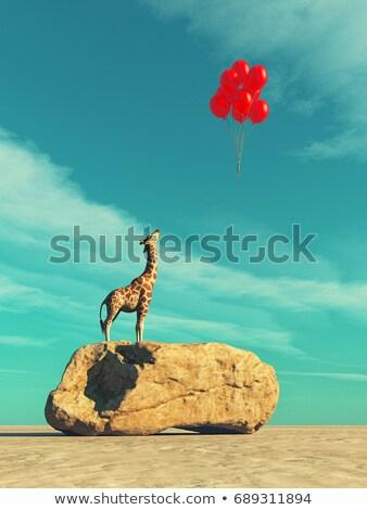 a giraffe standing on a large rock stock photo © orla