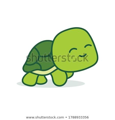 Icona felice tartaruga fondo nascita Foto d'archivio © Olena
