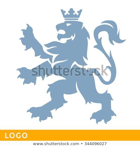 oroszlán · címer · kabát · karok · áll · lábak - stock fotó © krisdog