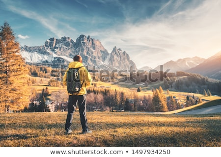 Standing sporty man with backpack on the mountain peak  Stock photo © denbelitsky