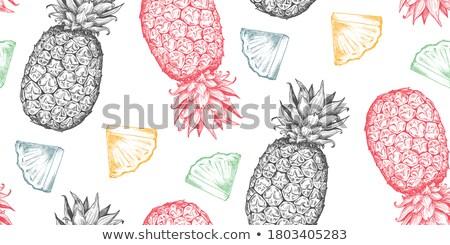 Vintage ananas retro-stijl oneindig Stockfoto © lucia_fox