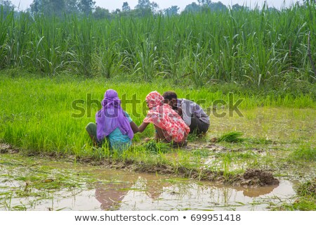 business woman with farmer in mud Stock photo © IS2