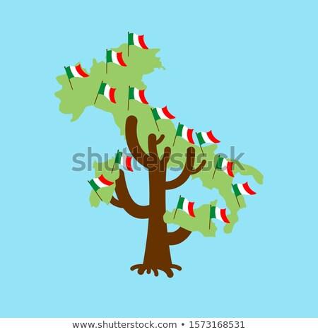 Patriotic tree Italy map. Italian flag. National political Plant Stock photo © popaukropa