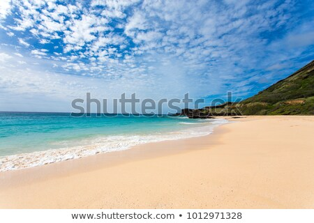 Sandy Beach Park, Oahu Stock photo © dirkr