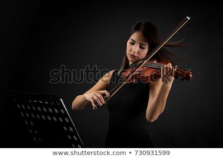 hegedű · zenekar · előad · színpad · sötét · művész - stock fotó © is2
