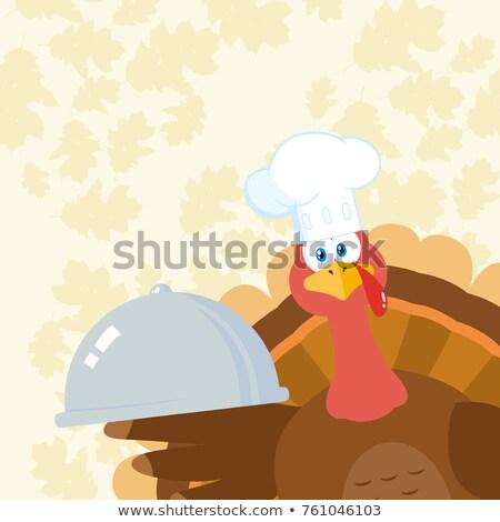 Türkiye şef karikatür maskot karakter köşe Stok fotoğraf © hittoon