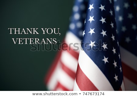 Veterans Day Patriotic Soldier American Flag Stock photo © Krisdog