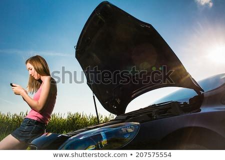 автомобилей · мобильного · телефона · Постоянный · говорить · счастливым - Сток-фото © lightpoet