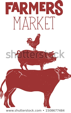Poster for local market. Cow, pig, hen stand on each other Stock photo © FoxysGraphic