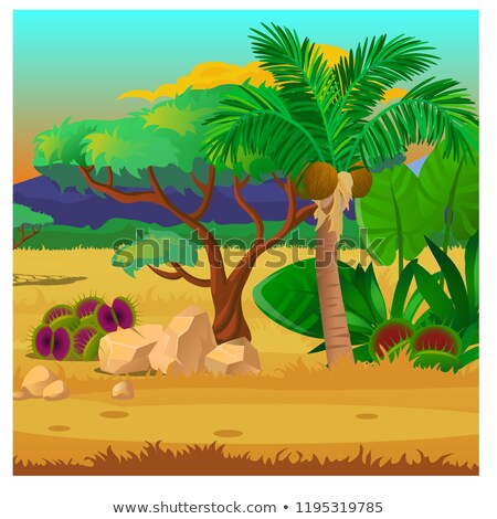 Picturesque landscape with a coconut palm tree, rocks and carnivorous plants. Sketch of a beautiful  Stock photo © Lady-Luck