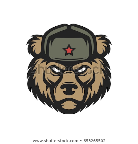 orosz · medve · vektor · művészet · fej · tipográfia - stock fotó © morys