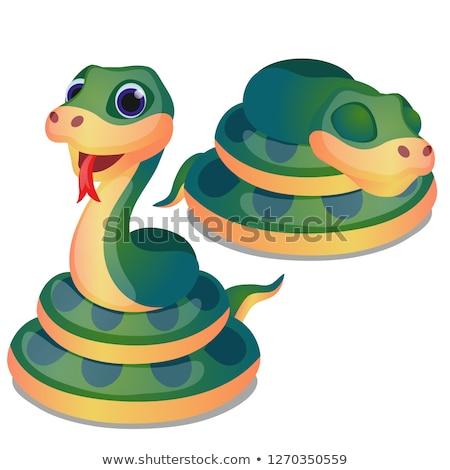 зеленый · змеи · спальный · Cartoon · иллюстрация - Сток-фото © lady-luck