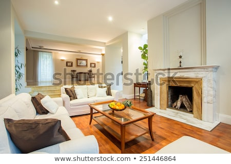 Tágas nappali hagyományos kandalló szürke kanapé Stock fotó © iriana88w