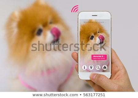 Stock photo: IoT Pet